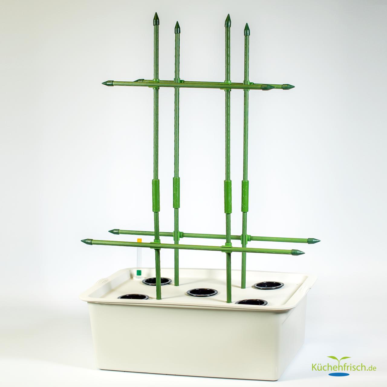 Indoorgarten DWC-Set 5 Pflanzen mit Pflanzgitter