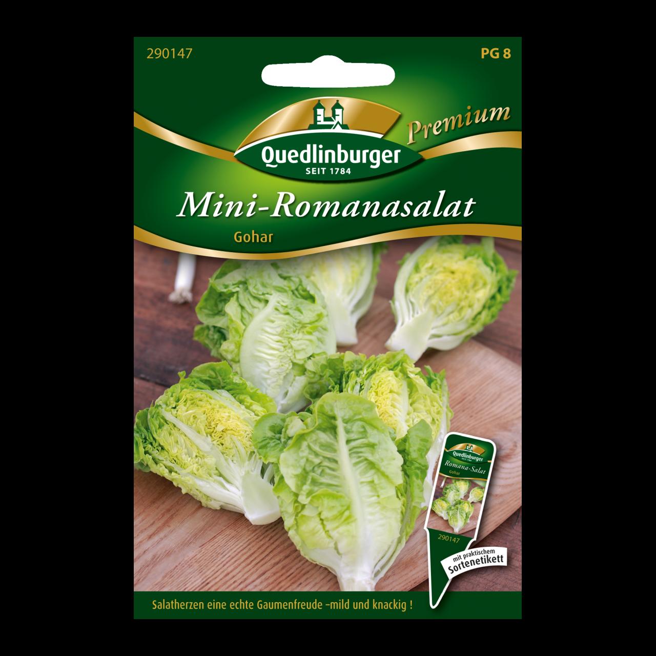 Quedlinburger Saatgut - Mini-Romanasalat