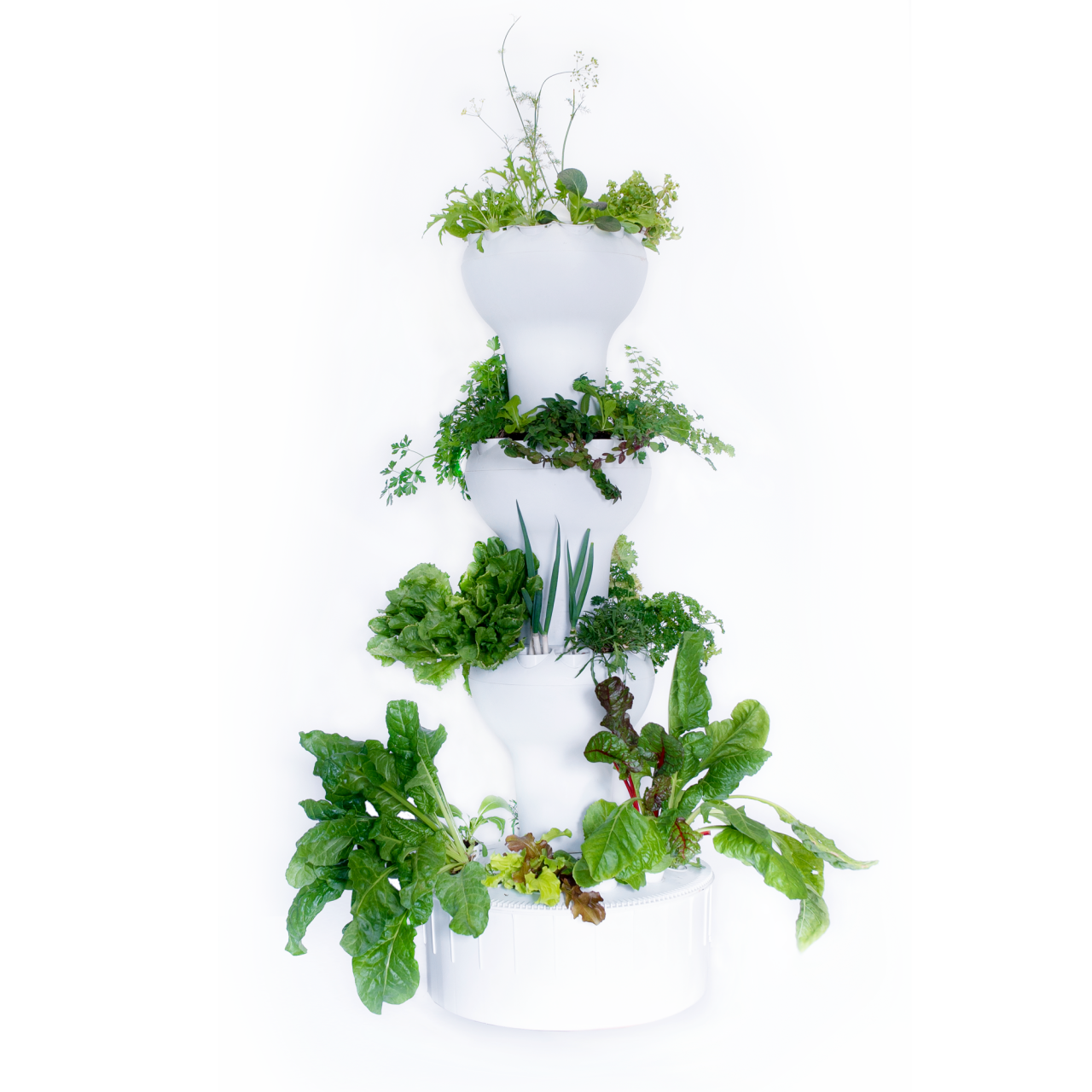 Pflanzsäule 44 Hydroponik bepflanzt