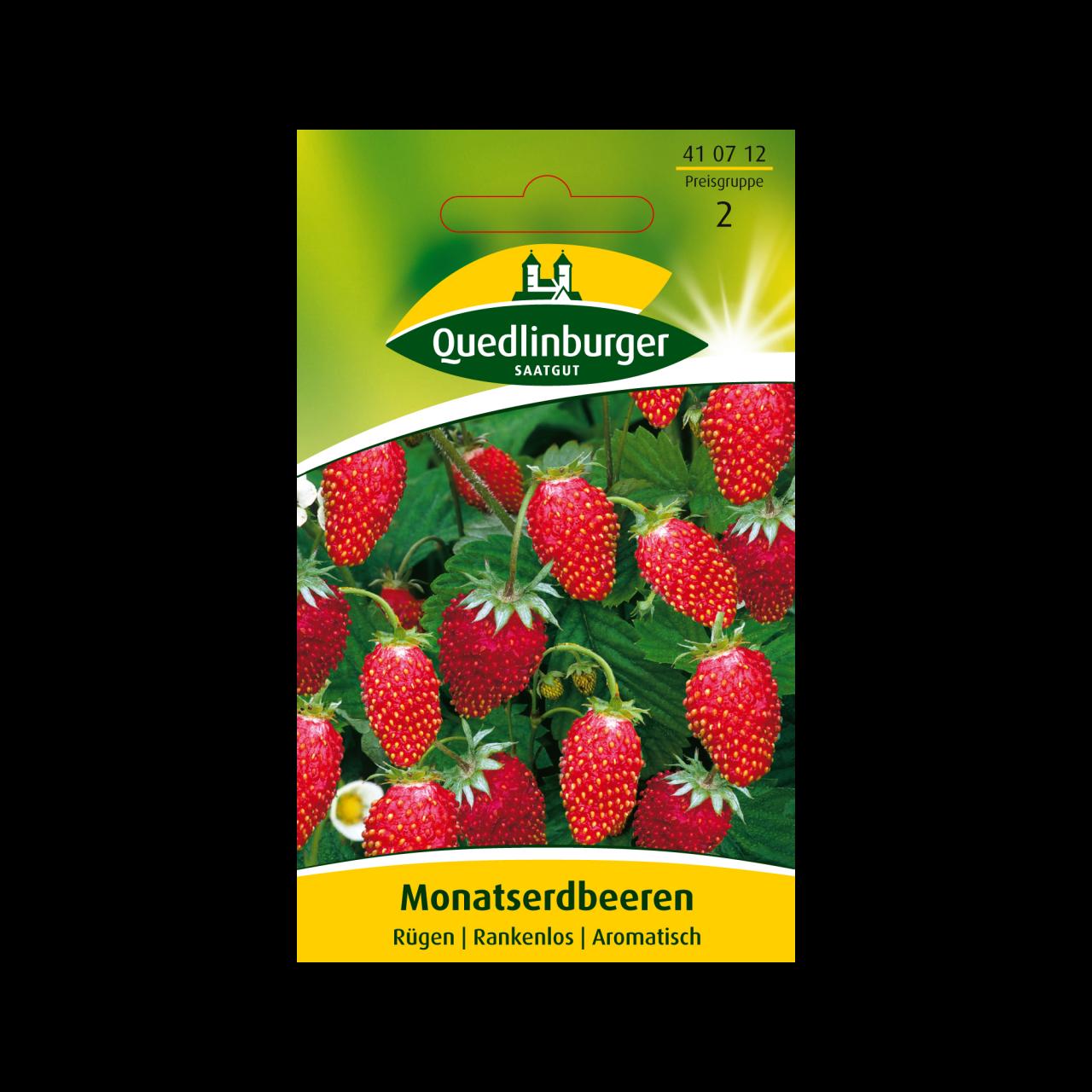 Quedlinburger Saatgut - Monatserdbeeren Rügen