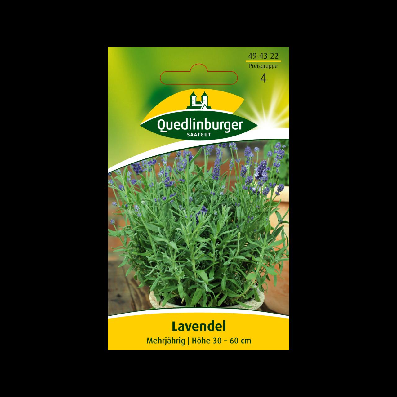 Quedlinburger Saatgut Lavendel Samen Vorderseite