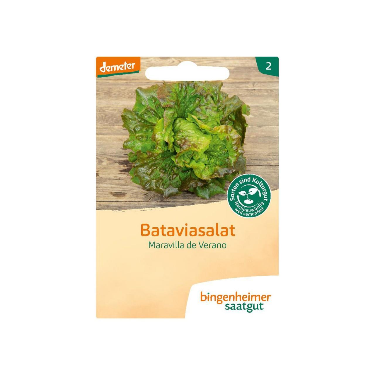 Bataviasalat - Bingenheimer Bio Saatgut
